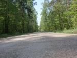 drogi_lesne-7